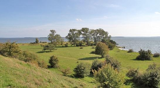 Halbinsel Gnitz auf Usedom